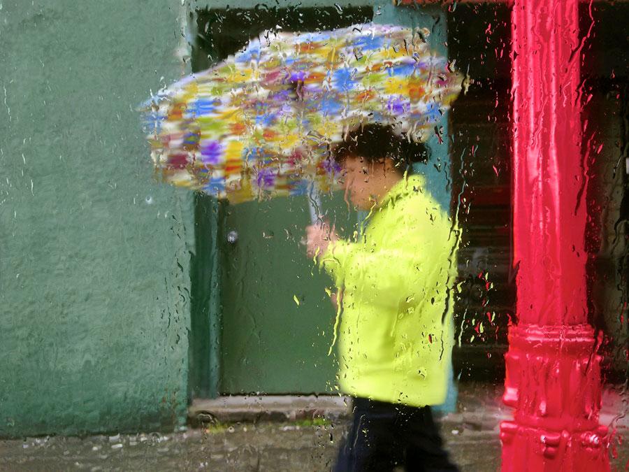 Rain, 2014